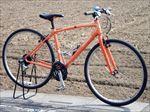 150_rental bike.JPG