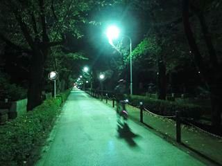 niwa_DSC04024.JPG