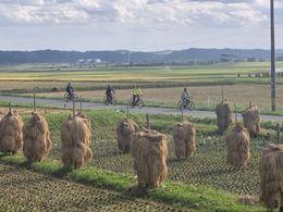 tohoku cycling_IMG_3704.JPG