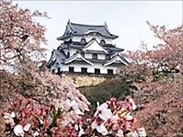 r_hikone.jpg